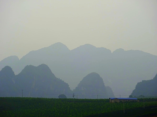 The limestone karsts of Nonggang.